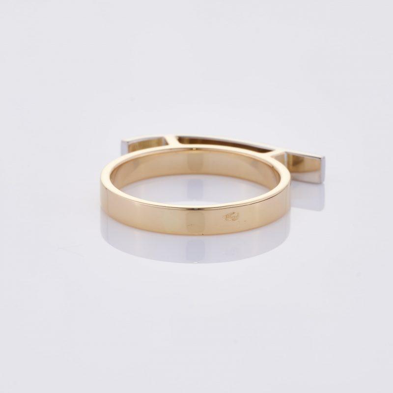 Vague Ring 021