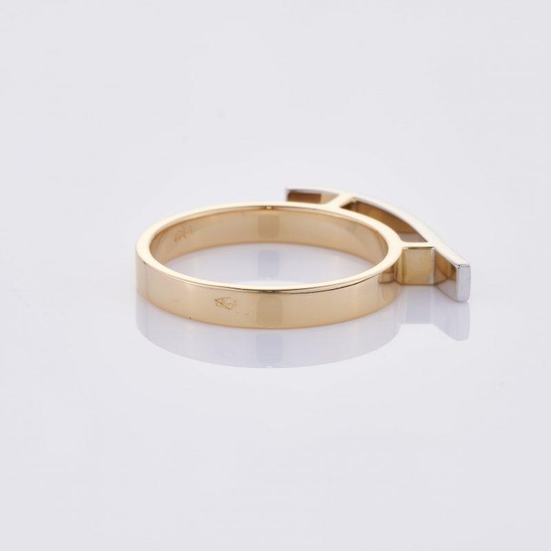 Vague Ring 02