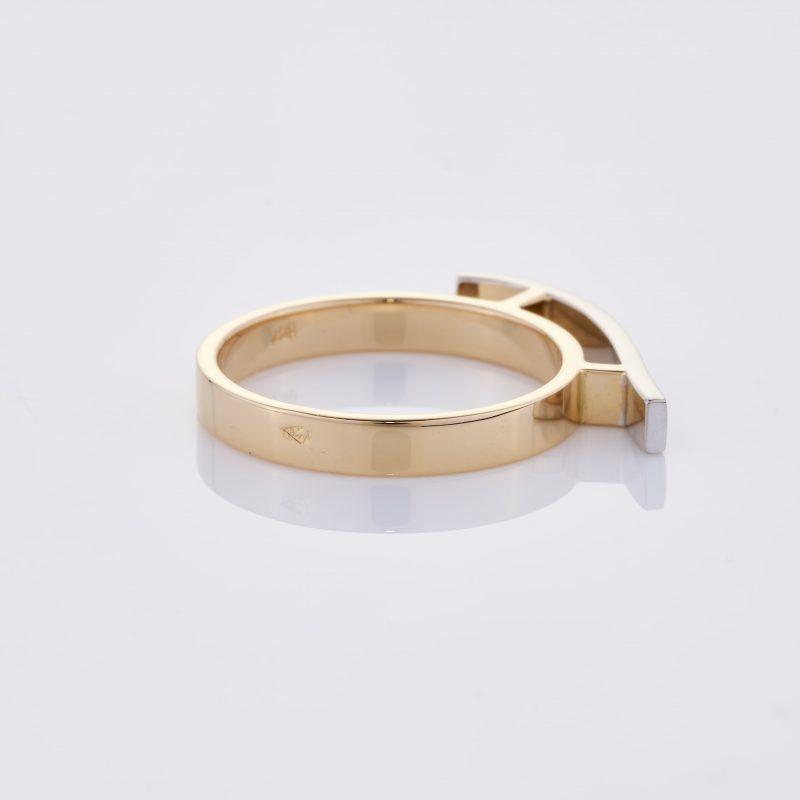 Vague Ring 026